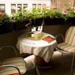 Сад на балконе - зеленый уголок в доме