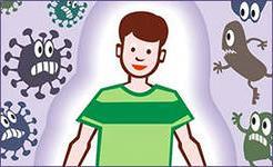 как укрепить иммунитет, как повысить иммунитет