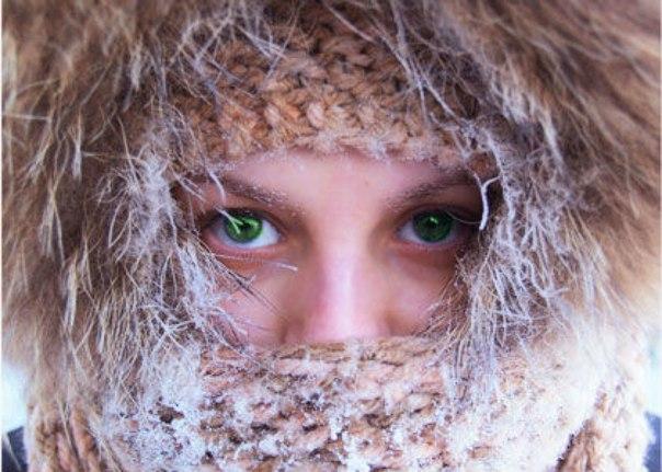 почему не замерзают глаза любимое лакомство многих