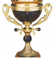 Кубок признания за лучший сайт