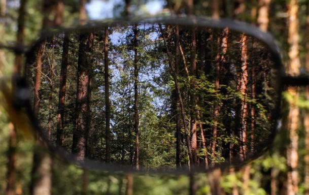 Коррекция зрения при наследственной близорукости