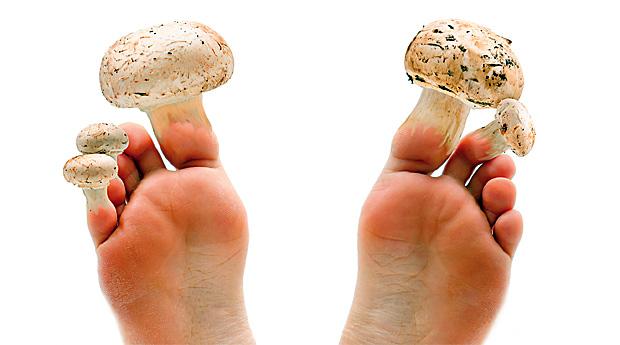 Когда грибы нежеланны...
