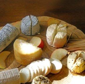 Сыр и его полезные свойства