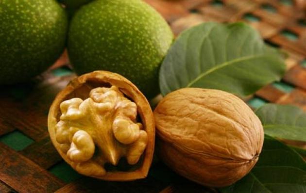Грецкий орех. Лечебные свойства и применение.