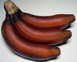 Полезные факты о бананах (красный банан)