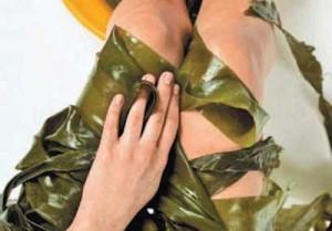 Морские водоросли для обертывания