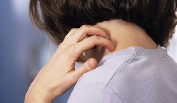 Болезнь чесотка: признаки и лечение