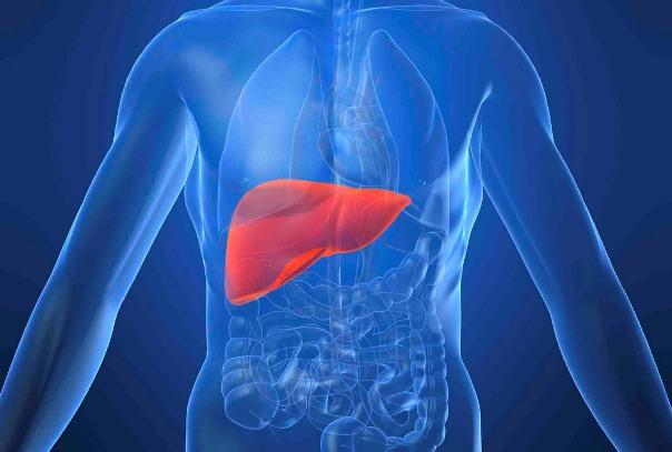 Гепатит с и способы заражения
