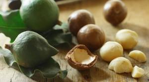 Чем полезен орех макадамия?