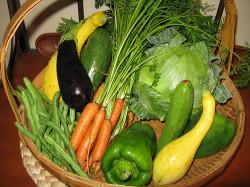 Щелочная диета: нормализуем кислотно-щелочной баланс.