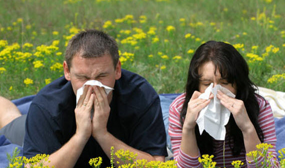 аллергия сезонная