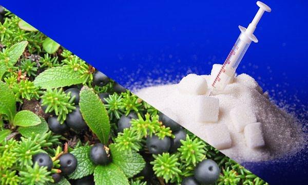 Лечение сахарного диабета народными методами.