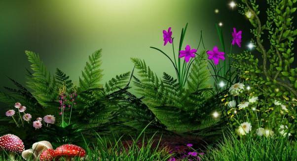 Лекарственные растения опасные свойства